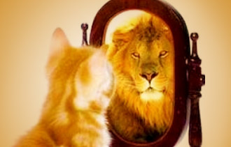 a-lion-in-the-mirror